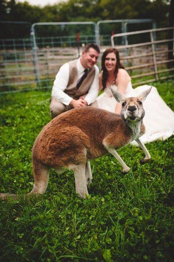landonalisonwedding 436 002
