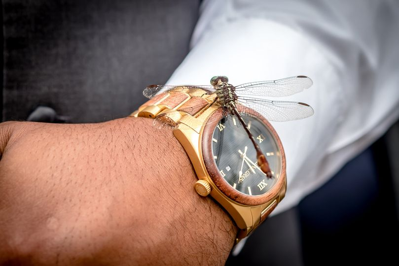 Dragonfly on gold watch