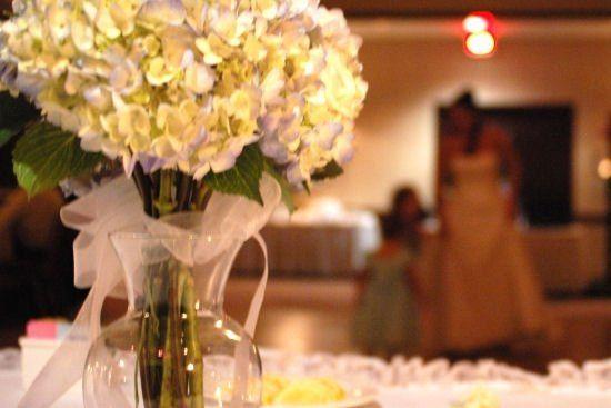 weddingwire gailjoseph2