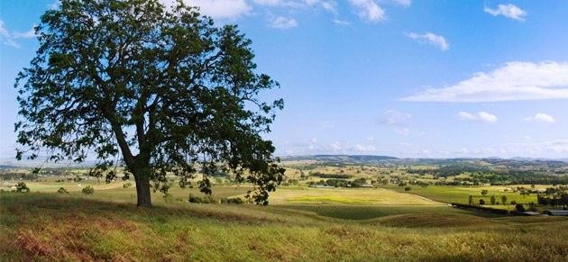 Atascadero is located in the heart of Paso Robles Wine Country and only 20 minutes to the coast!