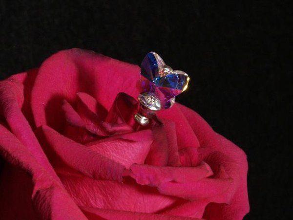Tmx 1238867648390 P3098557close Denver wedding invitation