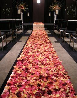 Beautiful Rose petal isle.