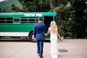 Turtle Bus