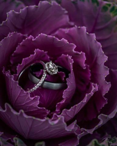 Tmx Knot Sarah Farkas Photography 51 1863191 159240394233954 Bellows Falls, VT wedding photography