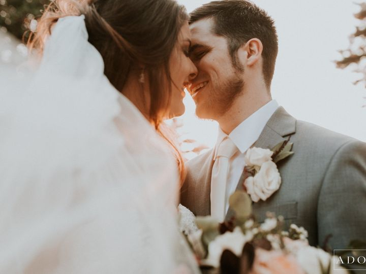 Tmx Adore Wedding Photography 25318 51 473191 1560382629 Royal Oak, MI wedding planner