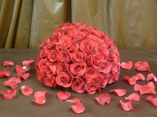 Red Roses & Rose Petals