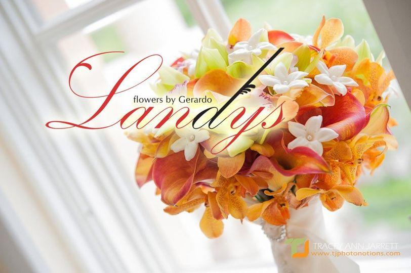 Landys Flowers by Gerardo