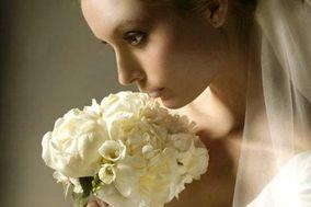 Pearl Swan Images