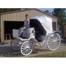 This is our small Victoria! Great for bringing the bride in and taking the Bride and Groom away. The...