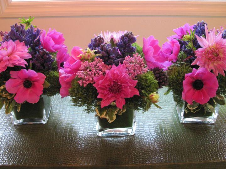 Tmx 1341326855491 IMG0257 Chatham wedding florist