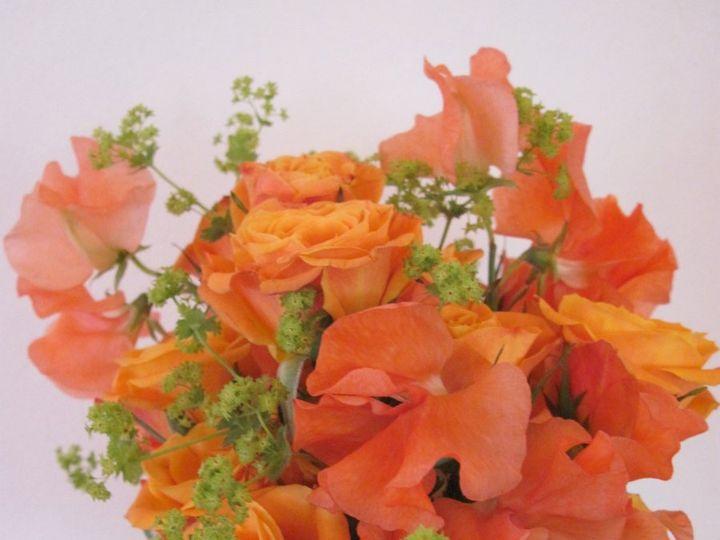 Tmx 1341327262045 IMG0369 Chatham wedding florist
