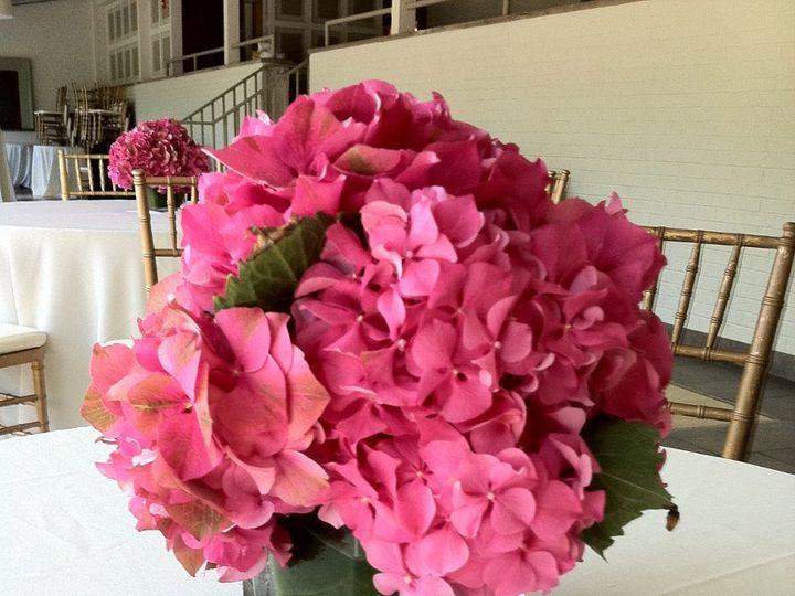 Tmx 1341327284346 IMG1341 Chatham wedding florist