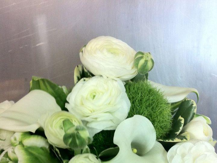 Tmx 1341327299367 IMG1346 Chatham wedding florist