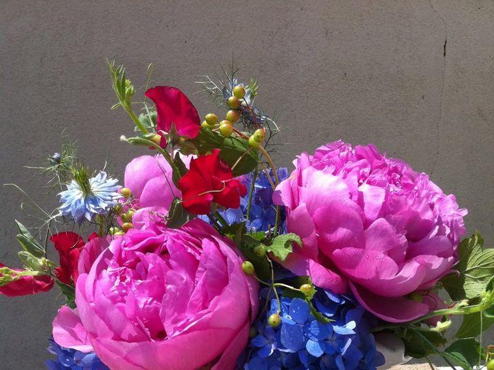 Tmx 1341327360160 IMG1410 Chatham wedding florist