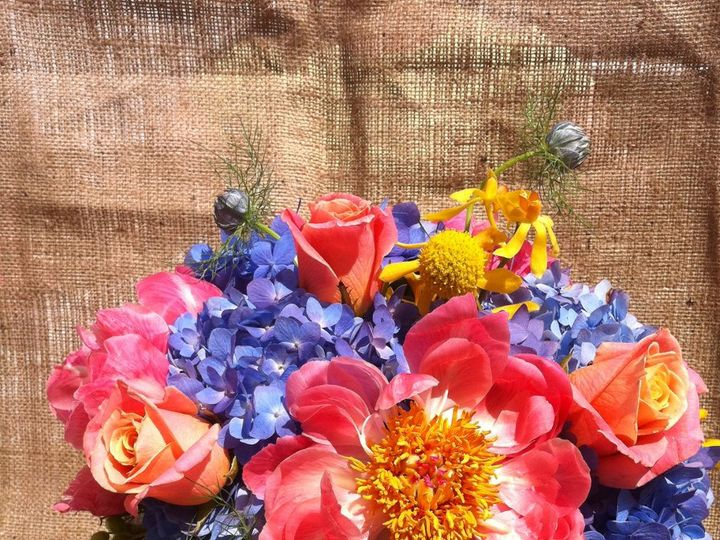 Tmx 1341327377347 IMG1416 Chatham wedding florist
