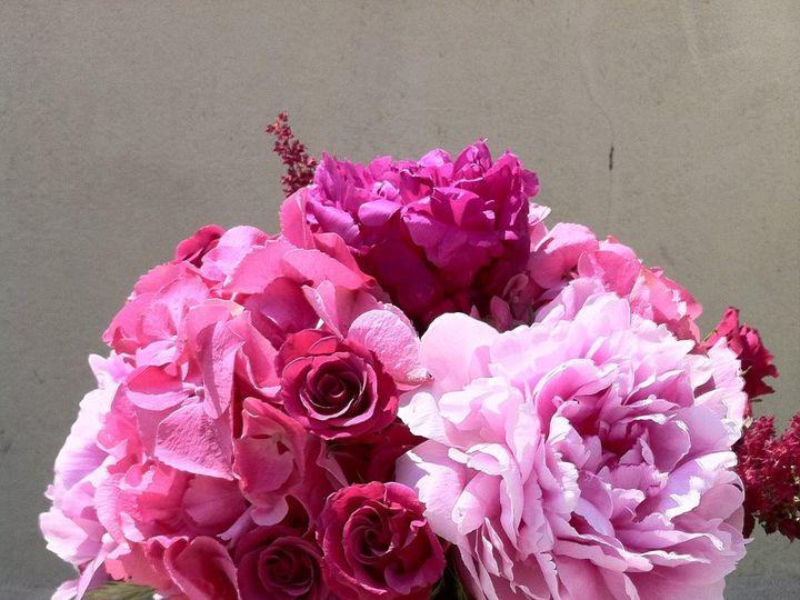 Tmx 1341327392670 IMG1421 Chatham wedding florist