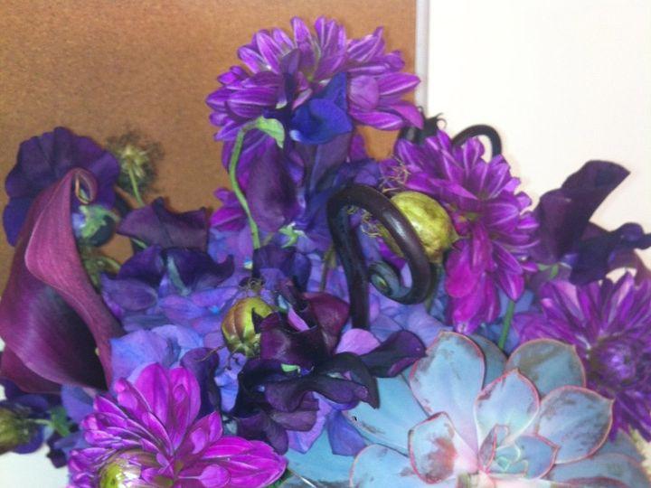 Tmx 1341327449469 IMG2687 Chatham wedding florist