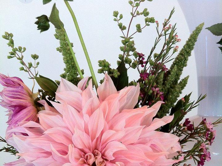 Tmx 1341327465832 IMG2699 Chatham wedding florist