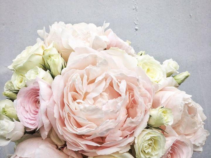 Tmx 1478277059948 Img5965 Chatham wedding florist