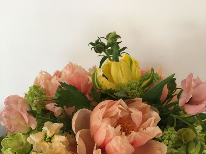 Tmx 1530116436 29d4603d9c1642ca 1530116431 23282f67393b3707 1530116419254 39 IMG 0187 Chatham wedding florist