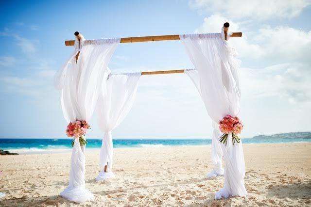 Tmx 1530116454 9cae0252e6a88084 1530116454 8d7cdf5108b3a5c0 1530116419371 58 Unnamed 14 Chatham wedding florist