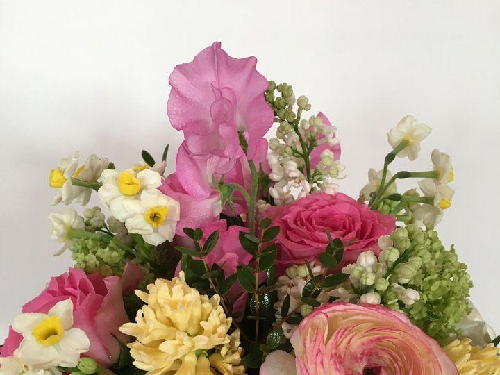 Tmx 1530116597 92143a5c0bba9be7 1530116594 67ce73e5f5fc9566 1530116559296 127 IMG 0105 Chatham wedding florist