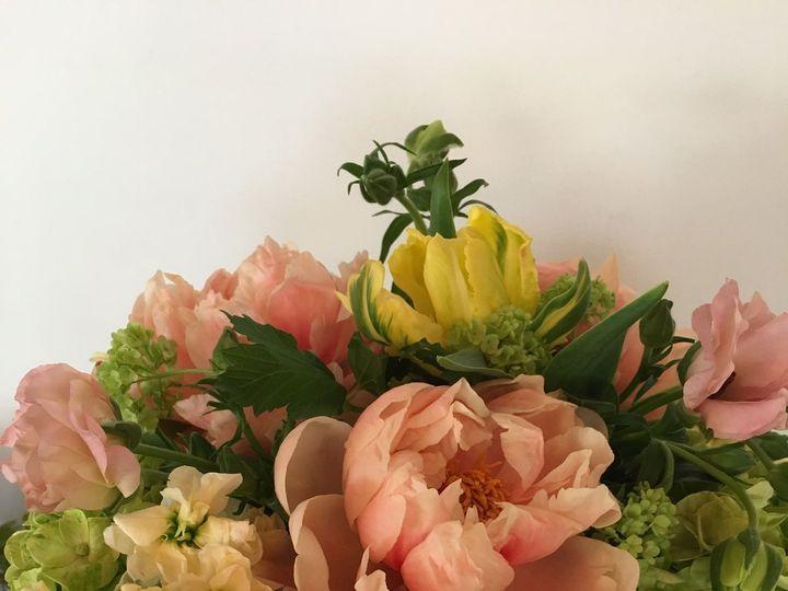 Tmx 1530116600 1ce913987474d475 1530116595 D47ae7c28c5e6b72 1530116559299 130 IMG 0187 Chatham wedding florist