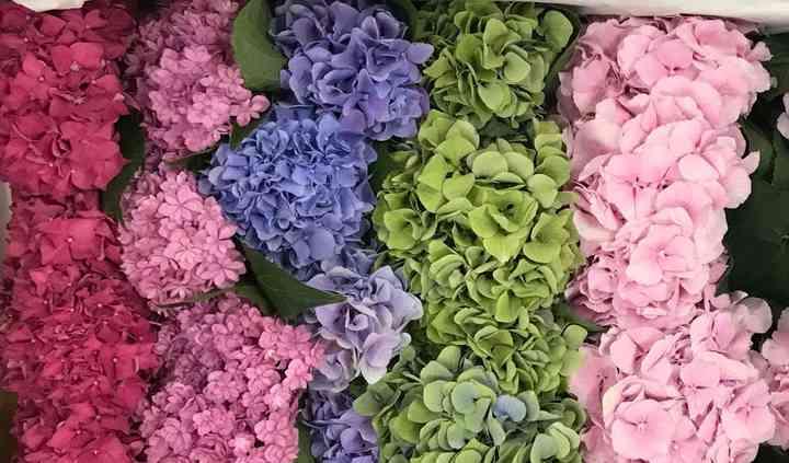 Springfield Wholesale Flowers