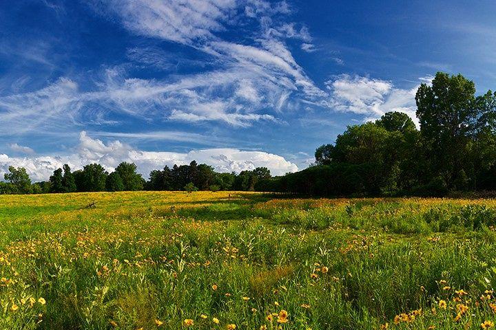 19 acres of rolling prairie