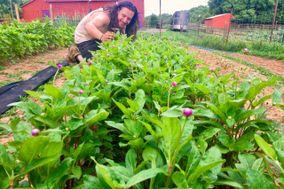 Gypsy Flower Farm
