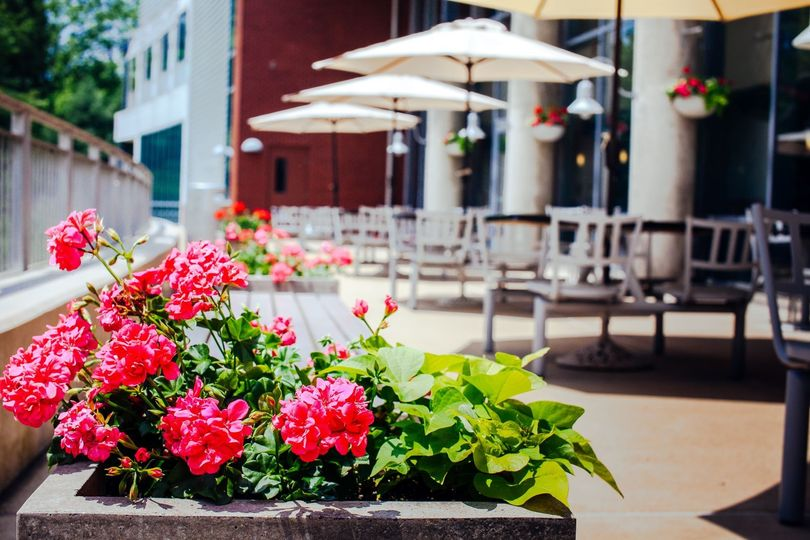 Blooming Patio Space.