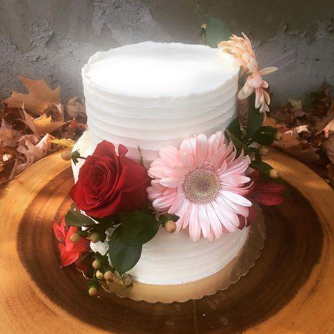 Tmx 121566997 398318418001544 5440670775289082222 N 51 410491 160996838683290 Schuylerville, NY wedding cake