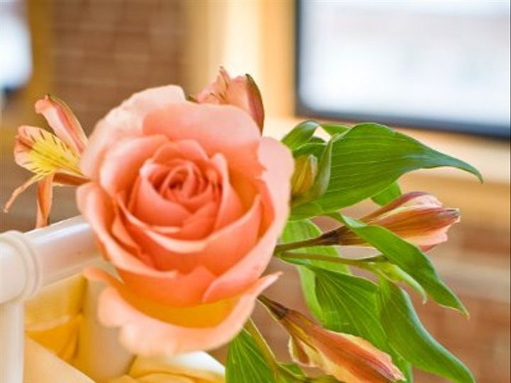 Tmx 1264888400127 Photoshootanderinswedding028 O Fallon wedding planner