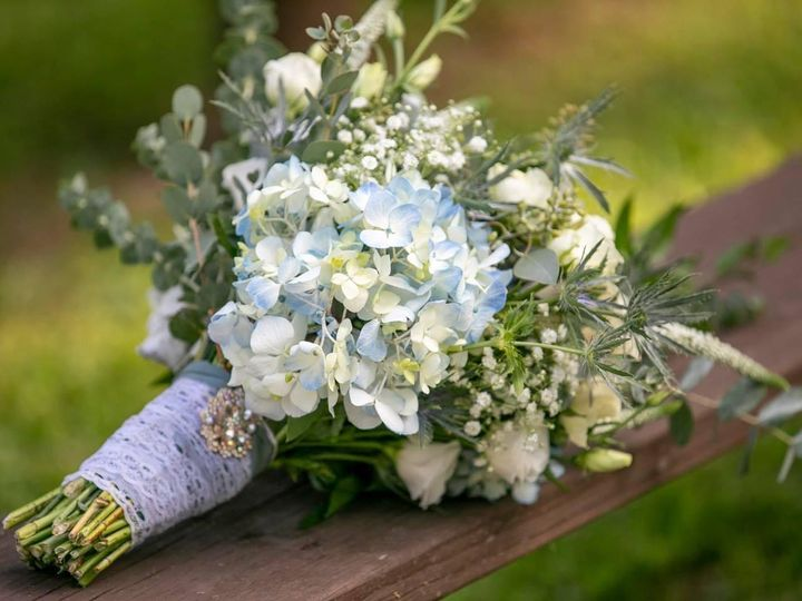 Tmx Img 4455 51 1053491 160011365347491 Blue Ridge, GA wedding venue