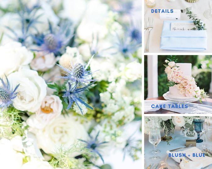 Light blue details