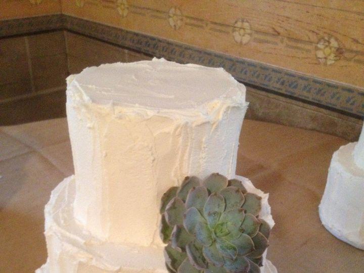 Tmx 1394747222293 Succulentcak Sugar Land, TX wedding florist