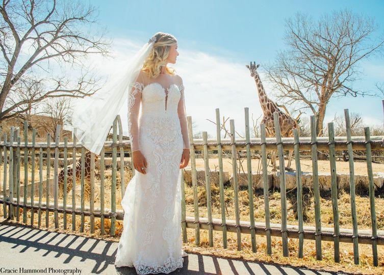 Bride and Giraffe