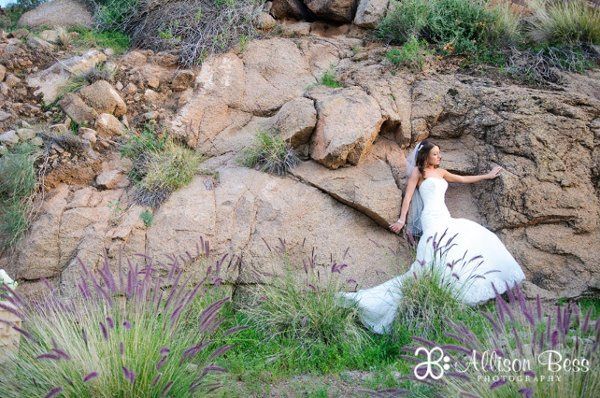 800x800 1298308185330 bdmphoenixsanctuarywedding22