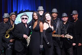 The Dee Dee Wilde Band