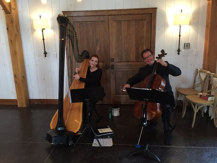 Cello and Harp Duo