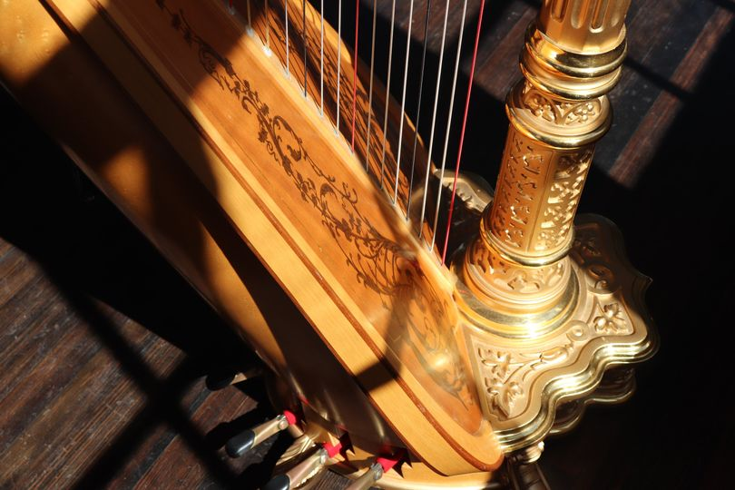 Sunlight on the harp