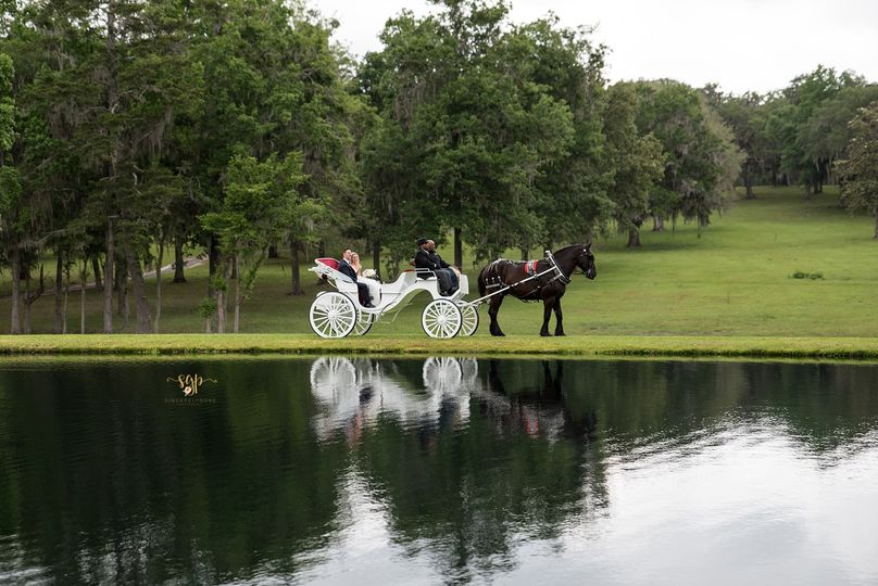 Horse and Carriage at Island