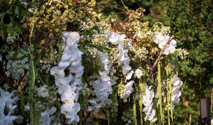Garden Vivien