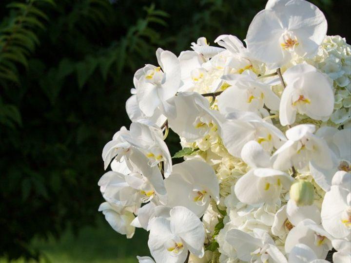 Tmx Michelleken 1162 51 1974891 159417083450101 Silver Spring, MD wedding florist