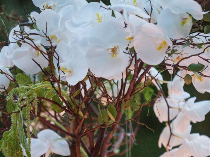 Tmx Michelleken 1549 51 1974891 159417083823498 Silver Spring, MD wedding florist