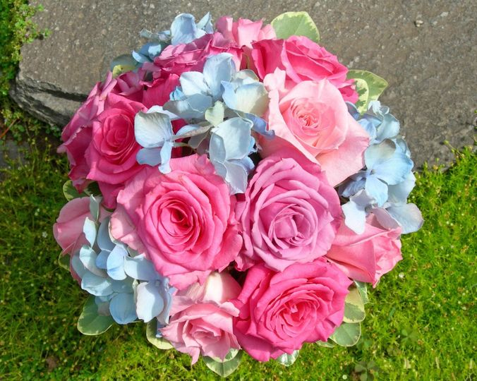 Bouquets by toni flowers east rochester ny weddingwire 800x800 1445210044456 purple roses with wild flowers clearblue ribbon 800x800 1445210071623 pink rose and blue hydrangea mightylinksfo