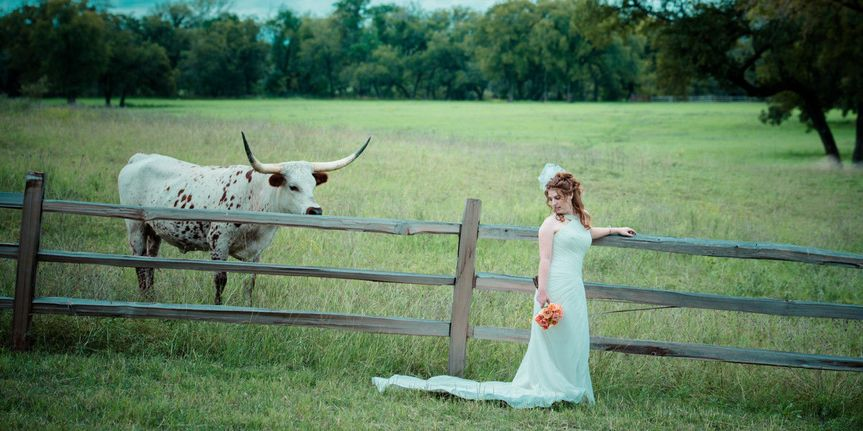 c04f8f45d0aec8f5 1427307814811 bride ranch longhorn wedding venue