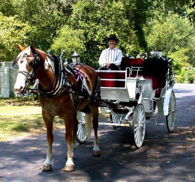 Tmx 1460140705212 Wedding 001 Addison, TX wedding officiant
