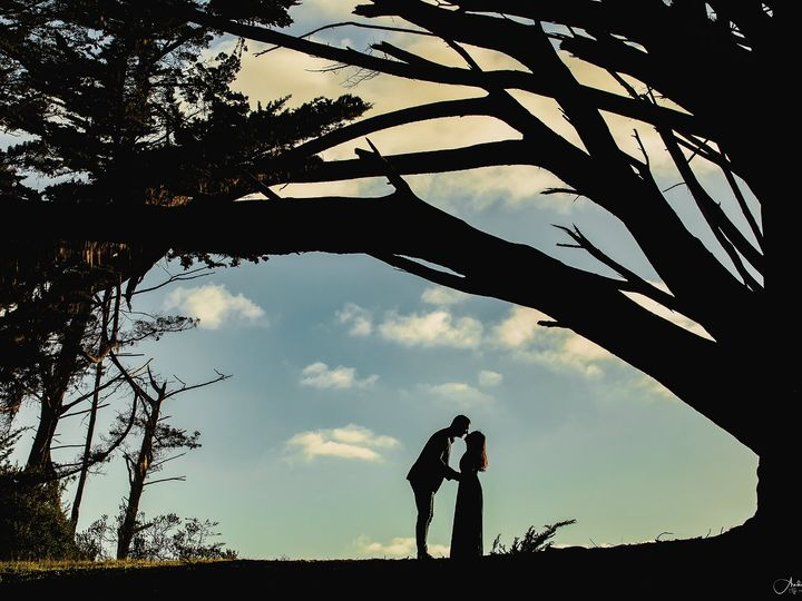 Tmx Andy0608 51 1038991 161186063511081 San Jose, CA wedding photography