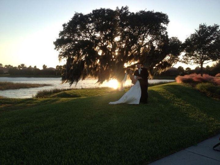 bridal tree 51 169991 158653257137449